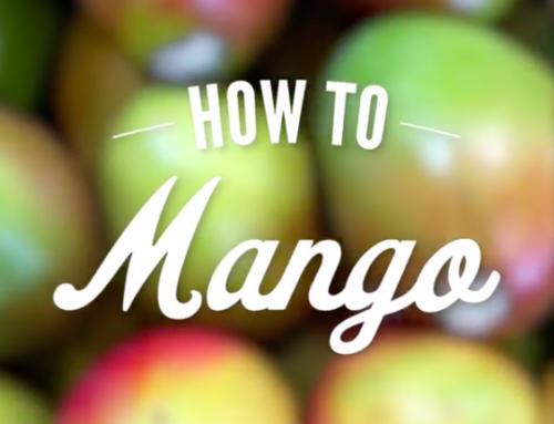 How to Mango- The Darwin Way