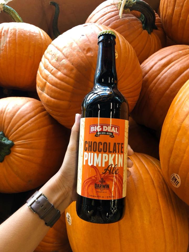 Say Hello To Fall With Our Delicious Chocolate Pumpkin Ale