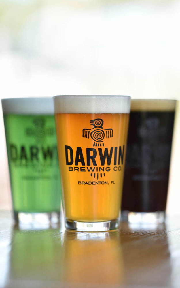 3 Pints of Darwin Beer