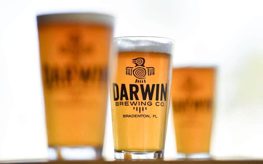 Darwin Brew Room