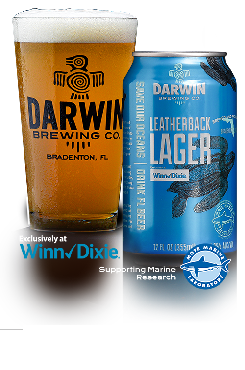 Darwin Brewing Co. Leatherback Lager