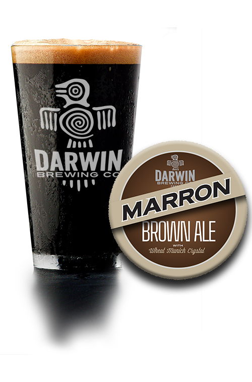 Darwin Brewing Co. Marron Brown Ale