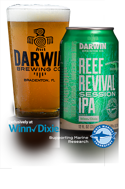 Darwin Brewing Co. Reef Revival