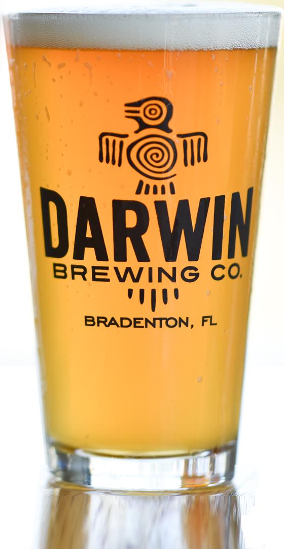 Darwin Brewing Company Summadayze IPA